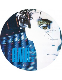 RAUL MIX (Picture Disc) VINYL