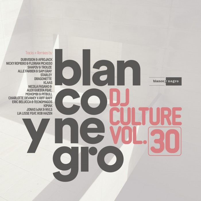 BLANCO Y NEGRO DJ CULTURE Vol.30